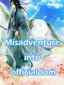 Misadventure into officialdom